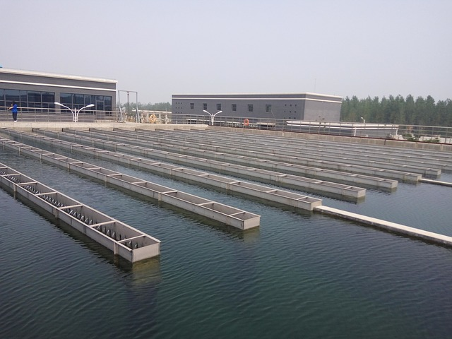 5 Common Applications of a Water Treatment Plant